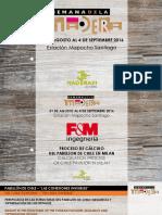 Proceso de Cálculo Del Pabellón de Chile en Milán Sandro Favero