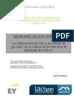 IAE-LYON-Bilel-DJEMMALI.pdf