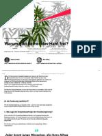 Cannabis-Legalisierung_ So Steht Die Regierung Zum Verbot - Today - Bento
