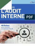 Les Outils de Laudit Interne _ 40 Fiches Pour Conduire Une Mission Daudit-Eyrolles (2013)