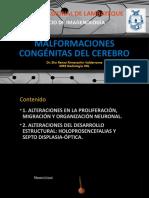Malformaciones congénitas cerebrales parte 1