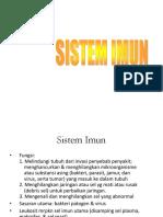Sistem i Mun