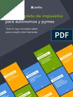 Guia Completa Impuestos Autonomos y Pymes