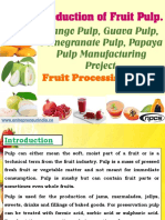 Production of Fruit Pulp. Mango Pulp, Guava Pulp, Pomegranate Pulp, Papaya Pulp Manufacturing Project.