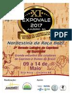 EXPOVALE PROJETO 2017