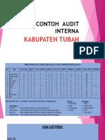 Contoh Audit Internal