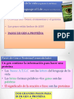 Transcripcinytraduccindeadn1ppt2015 150721174438 Lva1 App6891 (1)