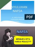 282445478-PENYULUHAN-NAPZA