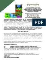 GRATITUD 7 DIAS.pdf