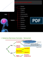 UPSJB SNC- Anestesicos Locales y Generales