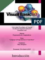 Lenguajedeprogramaciondevisualbasic 150616005157 Lva1 App6892