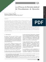 revision judicial apuntes.pdf