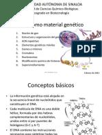 ADN_como_material_genético (2).pptx