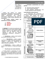 Resumo - Histologia