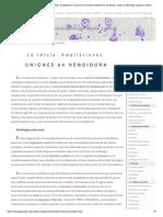 La Célula. 3-Membrana Celular. Ampliaciones. Uniones en Hendidura Modelo de Membrana. Atlas de Histología Vegetal y Animal