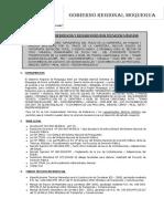 TDR REPLANTEO TOPOGRAFICO.pdf