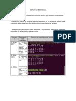 Actividad Individual Linux