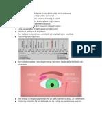 eye anatomy my notes
