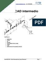 Manual Autocad Intermedio1