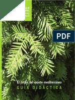 plantas mediterraneo