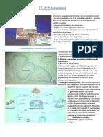Neoplasias, Patología Veterinaria, UBA.