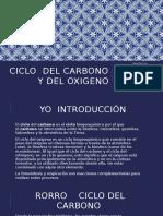 Ciclo Del Carbono y Oxigeno