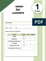 1er Grado - Examen Bloque 3 (2017-2018)