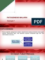 Patogenesis Malaria