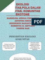 Ekologi Komunitas,Pola Dalam Komunitas, Komunitas Ekotone