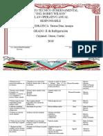PLAN OPERATIVO ANUAL 2018 TERESA.docx