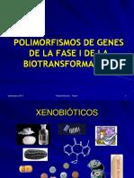 Clase 4- Genomica Funcional - 2017 (1)