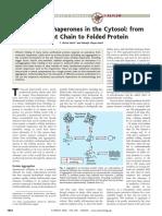 11. Chaperones Proteins