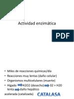 Actividad enzimática.pptx