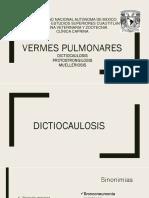 presentacion vermes pulmonares