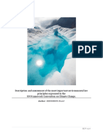 Description and assessment of the most important environmental law principles expressed in the UN Framework Convention on Climate Change (UNFCCC).