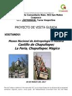 Proyecto Feria Villa Guerrero