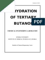 10- t-butanol