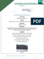 Proyecto Final Formulacion 2016 Rec Areas Degradadas (1)