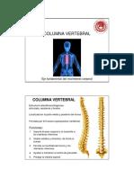 columna vertebral (1).pdf