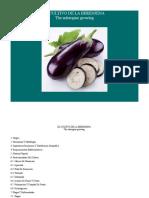 85006122-El-Cultivo-de-La-Berenjena.pdf