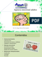 Taller Inteligencia Emocional Adultos.