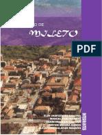 Imforme Ciudad de Mileto