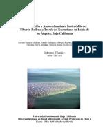 Tiburonballenaecoturismo.pdf