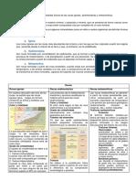 259802783-Trabajo-de-Rocas.docx