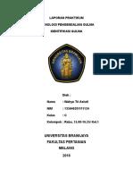 314498938-Laporan-Praktikum-Identifikasi-Gulma.docx