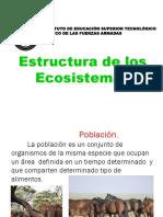 N° 5  Estructura de un ecosistema