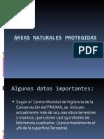 ÁREAS NATURALES PROTEGIDAS.ppt