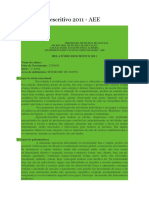 Relatório Descritivo 2011