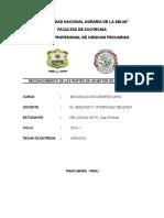 Informe de Mecanizacion - Del Aguila Soto, Oger Ernestodocx