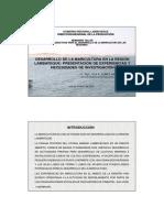 05-b Region Lambayeque-conchas de Abanico